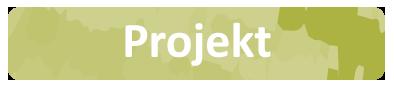 projektknapp