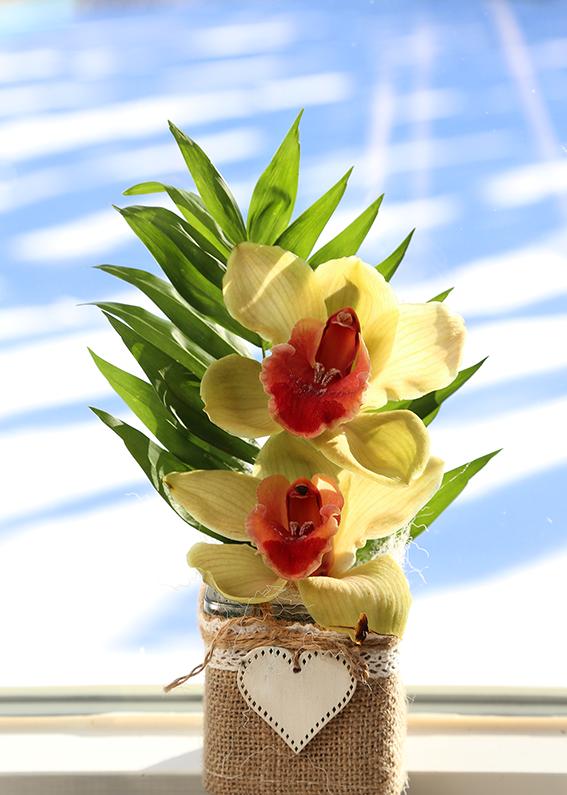 OrkideKKmid