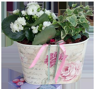 Blommamedkort